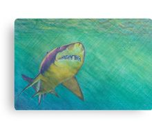 SKU318 Shark 2 design is available on canvas prints.