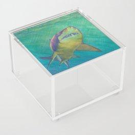 SKU318 Shark 2 Acrylic Boxes