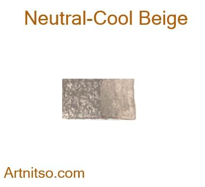 Caran d'Ache Neocolor II Neutral-Cool Beige Artnitso.com