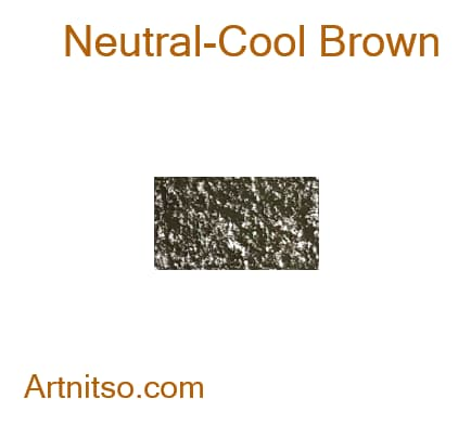 Caran d'Ache Neocolor II Neutral-Cool Brown - Artnitso.com