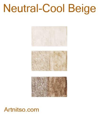 Caran d'Ache Supracolor Neutral-Cool Beige - Artnitso.com