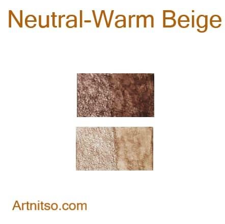 Caran d'Ache Supracolor Neutral-Warm Beige - Artnitso.com