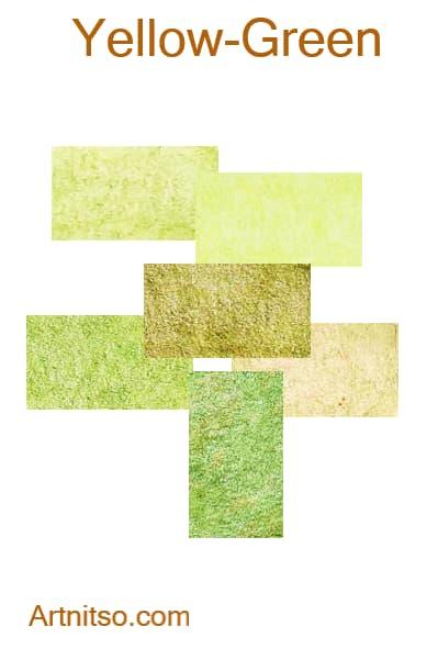 Faber Castell Polychromos - Yellow-Green - Artnitso.com