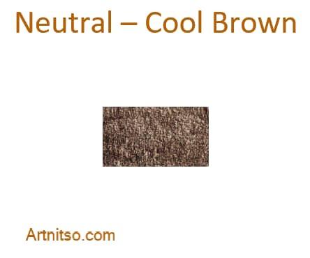Derwent Lightfast Neutral - Cool Brown - Artnitso.com