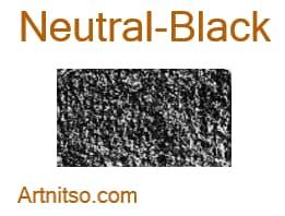 Caran d'Ache Neocolor I - Neutral-Black - Artnitso.com