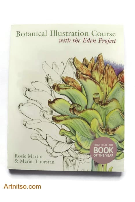 Learn Botanical Illustration Course with the Eden Project - Artnitso.com