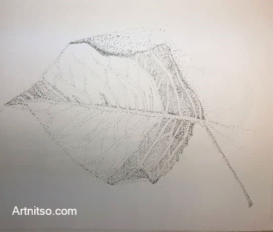 Leaf pointillism - Learn botanical illustration - Artnitso.com