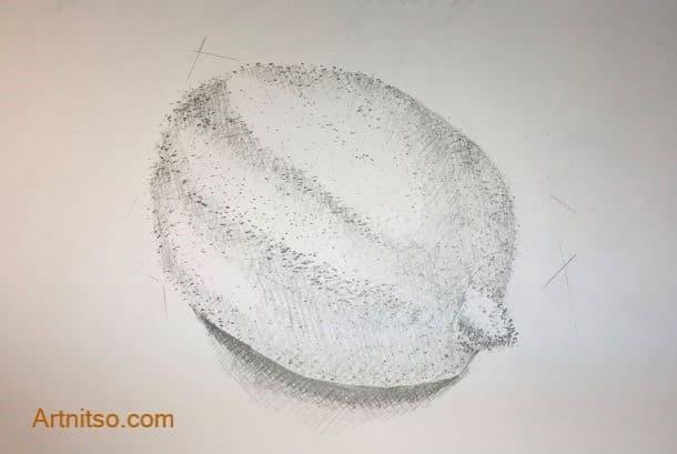 Lemon pointillism hatching - learn botanical illustration - Artnitso.com