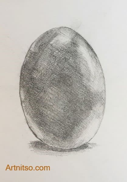 Learning Botanical illustration - an egg - Artnitso.com