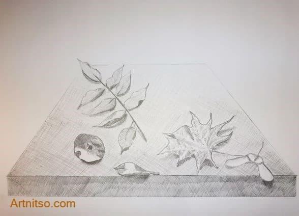 hatching perspective leaf - Botanical - Artnitso.com